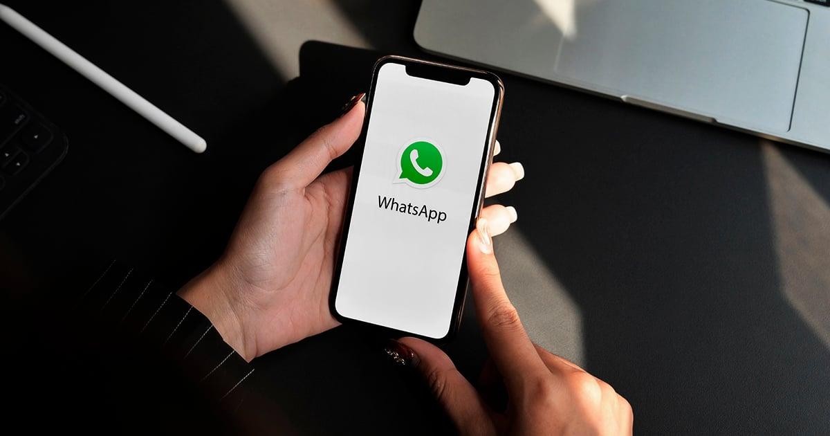 Utilize todo o potencial do WhatsApp para alimentar seu CRM com informações relevantes